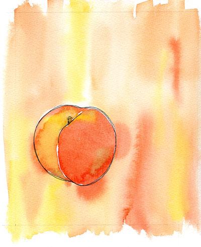 Gift Catalog - Peach